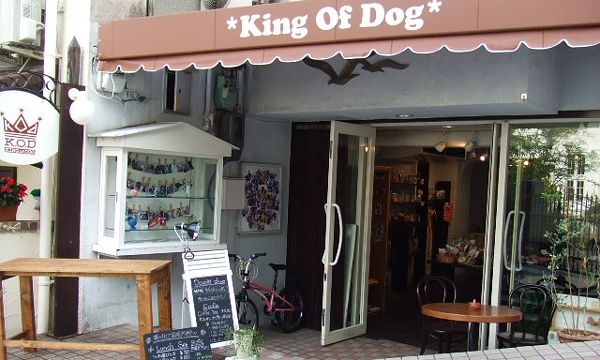 KING OF DOG外観