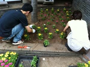 201108花の植え付け風景